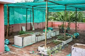 Vegetable Garden Netting Frame by Terrace Gardening My Green House
