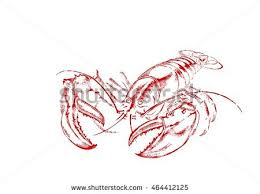 drawn lobster crayfish pencil and in color drawn lobster crayfish
