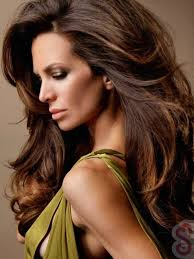 honey brown hair colour images honey brown hair color for dark