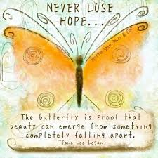 the butterfly is proof that can emerge from something