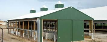 Calf Raising Barns Dairy Building Profile Use Dairy Calf Barn For Livestock
