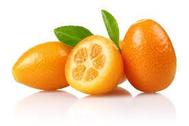 fruit club citrus fruit club monthly citrus fruit club free shipping
