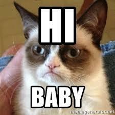Grump Cat Meme Generator - hi baby grumpy cat meme generator