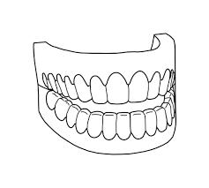 teeth coloring pages cecilymae