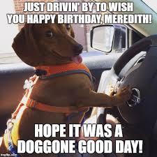 Wiener Dog Meme - wiener dog in car imgflip