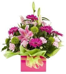 flowers arrangement boxed pink flower arrangement florist auckland wellington