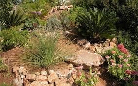Drought Tolerant Landscaping Ideas Best Drought Tolerant Landscaping Ideas Easy Drought Tolerant