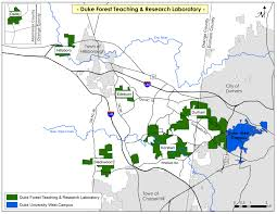 Wayne National Forest Map North Carolina Peeling Back The Bark