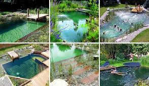Backyard Swimming Pools 30 Cool Outdoor Showers To Spice Up Your Backyard Amazing Diy