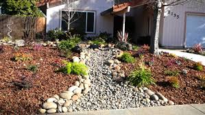 Drought Friendly Landscaping by Custom Plantings Premium Landscape Makeovers