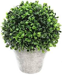 Topiary Balls With Flowers - amazon com artificial boxwood topiary ball table top plant with