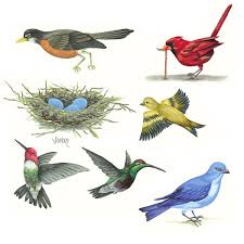 sj home interiors sj home interiors and wall decor birds and nest grizzly flat