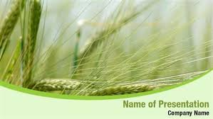 agriculture plants powerpoint templates and background