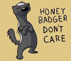 Honeybadger Meme - honey badger don t care by gatorvenom on deviantart
