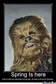 Chewbacca Memes - chewbacca by pixiofdoom meme center