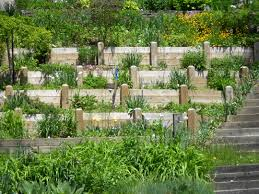 Tiered Garden Ideas Hillside Tiered Garden Outside Projects Pinterest Tiered