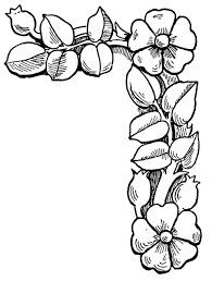 Part Of Flowers - coloring pictures of flowers to print new on creative online