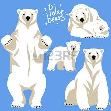 polar bears collection clip art isolated blue royalty free