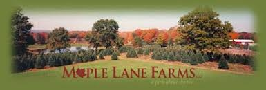 cctga maple lane farms preston ct