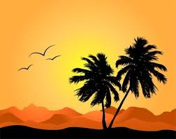 coconut tree free vector 4 843 free vector for