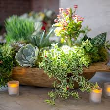 Decorative Fillers For Bowls Best 25 Bowl Centerpieces Ideas On Pinterest Fish Bowl