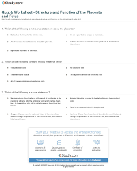 quiz u0026 worksheet structure and function of the placenta and