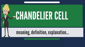 What Does Chandelier Mean What Is Chandelier Cell What Does Chandelier Cell Mean