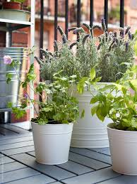 Ikea Plant Ideas by 298 Best Ikea Balcony Images On Pinterest Balcony Ideas Balcony