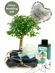 Wedding Gift Set Bonsai Gifts Perfect For Wedding Presents