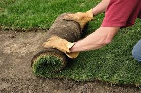 How To Regrade A Backyard Laying Sod Shortcut To A Beautiful Lawn Bob Vila