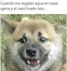 Meme Asco - top memes de asco en español memedroid