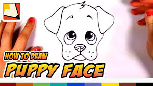 how to draw a cute puppy face step by step art for kids cc