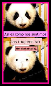 Panda Mascara Meme - the beauty is in the eye of the beholder jokes quotes funny
