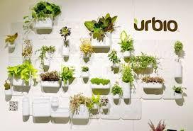 vertical indoor garden wall creative of apartment vertical garden