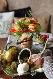 185 best silk velvet pumpkins acorns images on pinterest velvet