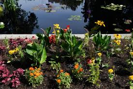 Denver Botanic Gardens Three New Specialty Gardens Open At Denver Botanic Gardens The