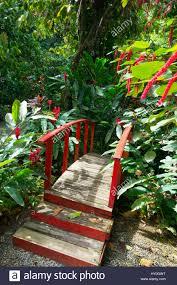 red japanese style bridge in the diamond falls botanical gardens