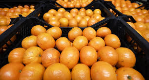 fruit deliveries syria wants to resume deliveries of fruit vegetables to russia