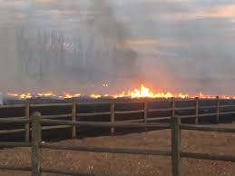 Wildfire Boulder Today by Grass Fire In Fort Collins Fully Contained 9news Com