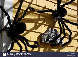big furry spiders on the outside of a house as halloween