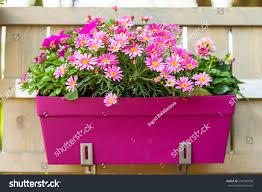 outdoor flower pot hanging on wooden stock photo 294500006