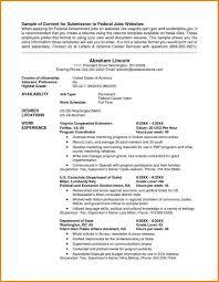 Resume Templates Usa Resume Usa Format Eliving Co