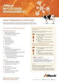 fact sheets alltech mycotoxin management