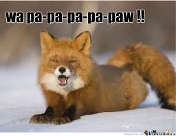 What Did The Fox Say Meme - what does the fox say by tr0ll hunt3r meme center