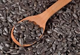 black sunflower seeds exporter located in bulgaria