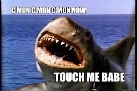 Jaws Meme - touch me babe c mon c mon c mon now jaws quickmeme