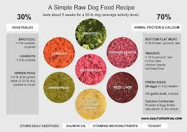 raw dog food recipes keep your pet healthy and happy