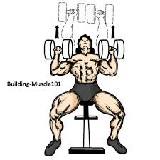 Bench Pressing With Dumbbells Incline Dumbbell Press