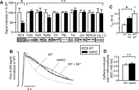 suppression of early and late afterdepolarizations by heterozygous