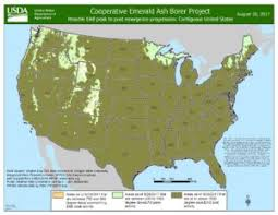 emerald ash borer map emerald ash borer finds in wisconsin wisconsin dnr forestry
